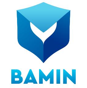 bamin-network